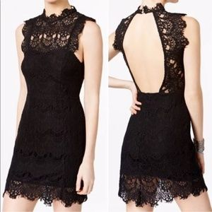 NWT Free People DayDream Lace bodycon Dress